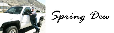 Spring Dew Logo